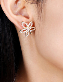 Fashion Gold Color Color Maple Leaf Pearl Alloy Hollow Stud Earrings