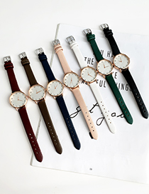 Brown Alloy Pu Watch