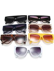 Fashion Black Frame Cat Eye Rivet Wide Temple Sunglasses