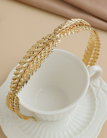 Fashion Gold Color Alloy Branches And Small Leaves Headband
