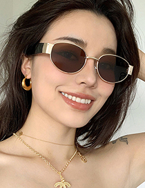 Fashion Gold Frame Gray Flakes Oval Sunglasses