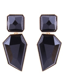 Elegant Black Irregular Shape Design Pure Color Earrings