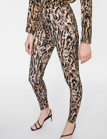 Fashion Brown Leopard Pattern Decorated Trousers