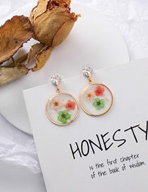 Fashion Red Pink Green S925 Silver Needle Flower Patch Transparent Circle Earrings