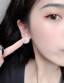 Fashion White Flower Crystal Flower S925 Silver Needle Earrings