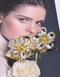 Fashion White Flower Crystal Glass And Diamond Earrings