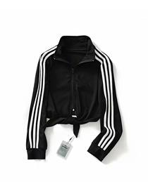 Fashion Black Patchwork Waistband Sweater