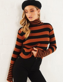 Brown Striped Turtleneck Sweater