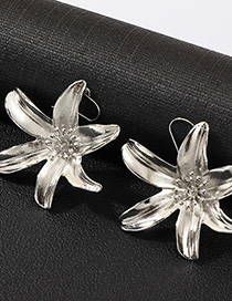 Fashion Silver Floral Paint Earrings