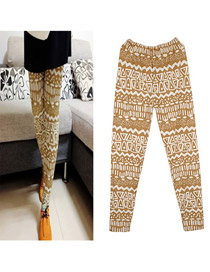 Letterhead Coffee Triangle Pattern Fit Slim Cotton Trousers