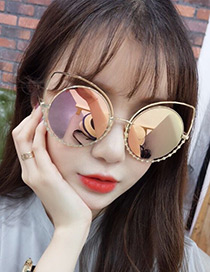 Fashion Champagne Cat's Eye Shape Decorated Simple Hollow Out Sunglasses